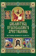 Павел Михалицын -Истины Нового Завета