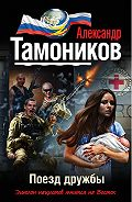 Александр Тамоников - Поезд дружбы