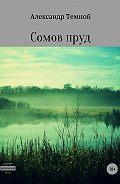Александр Темной -Сомов пруд