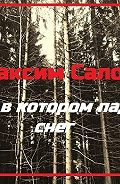 Максим Салос -Дом, в котором падает снег