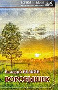 Валерий Белкин -Воробышек