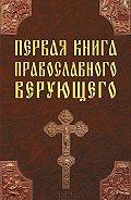 Павел Михалицын -Первая книга православного верующего