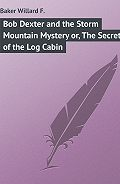 Willard Baker -Bob Dexter and the Storm Mountain Mystery or, The Secret of the Log Cabin
