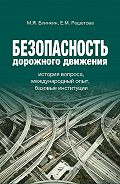 Екатерина Решетова -Безопасность дорожного движения. История вопроса, международный опыт, базовые институции