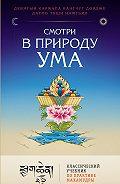 Дагпо Намгьял -Смотри в природу ума. Классический учебник по практике Махамудры