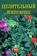 Иван Дубровин - Целительный шиповник