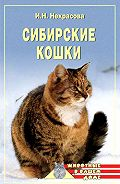 Ирина Некрасова - Сибирские кошки