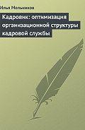 Илья Мельников -Кадровик: оптимизация организационной структуры кадровой службы