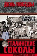 Станислав Сапрыкин - Сталинские соколы. Возмездие с небес