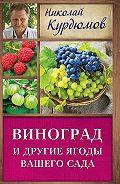 Николай Иванович Курдюмов -Виноград и другие ягоды вашего сада