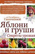 Октябрина Ганичкина, Александр Ганичкин - Яблони и груши: секреты урожая от Октябрины Ганичкиной