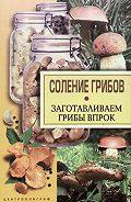 Соление грибов. Заготавливаем грибы впрок