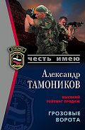 Александр Тамоников - Грозовые ворота