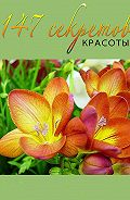 Михаил Титов -147 секретов красоты