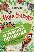 Максим Горький -Воробьишко. Рассказы с вопросами и ответами для почемучек