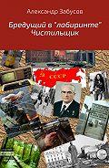 Александр Владимирович Забусов -Бредущий в «лабиринте». Книга 2. Чистильщик