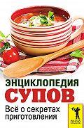 С. П. Кашин -Энциклопедия супов. Всё о секретах приготовления