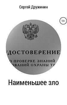 Сергей Дружинин - Наименьшее зло