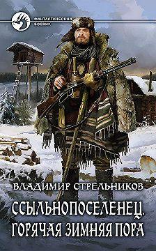 Владимир Стрельников - Ссыльнопоселенец. Горячая зимняя пора