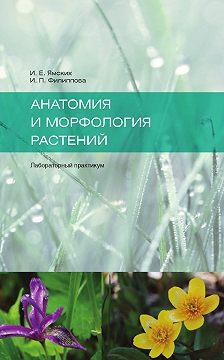 И. Филиппова - Анатомия и морфология растений