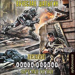 Вячеслав Шалыгин - Время огня