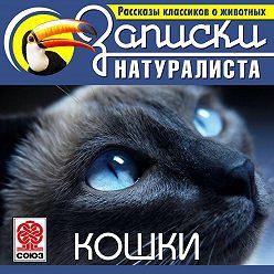 Коллектив авторов - Рассказы классиков о животных. Кошки