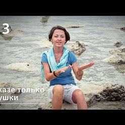 Евгения Тимонова - В джазе только девушки: каракатицы-трансвеститы