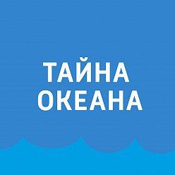 Павел Картаев - Мусорные острова в океане