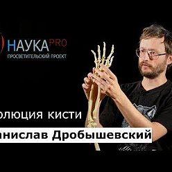 Станислав Дробышевский - Эволюция кисти