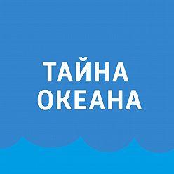Павел Картаев - Белое море