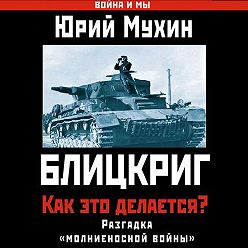 Юрий Мухин - Блицкриг: как это делается? Секрет «молниеносной войны»