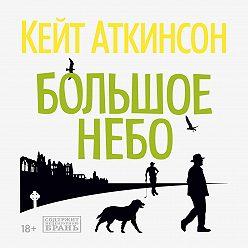 Кейт Аткинсон - Большое небо