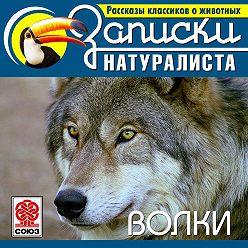 Коллектив авторов - Рассказы классиков о животных. Волки