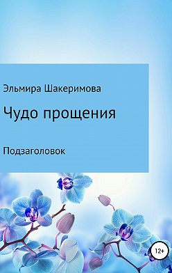 Эльмира Шакеримова - Чудо прощения