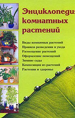 Наталья Шешко - Энциклопедия комнатных растений