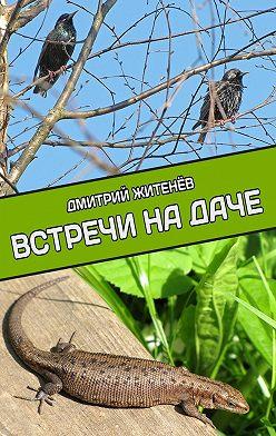 Дмитрий Житенёв - Встречи на даче