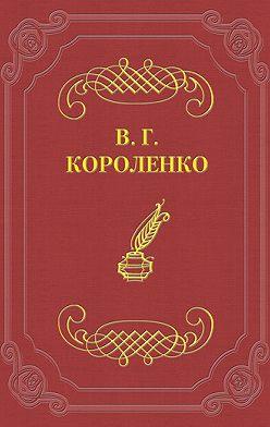 Владимир Короленко - Мгновение