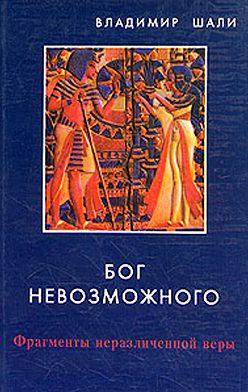Владимир Шали - Бог невозможного