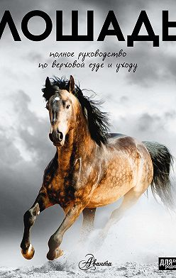 О. Костикова - Лошадь. Полное руководство по верховой езде и уходу
