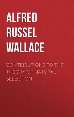 Alfred Wallace - Contributions to the Theory of Natural Selection
