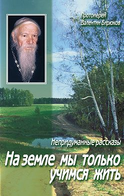 Валентин Бирюков (Протоиерей) - На земле мы только учимся жить