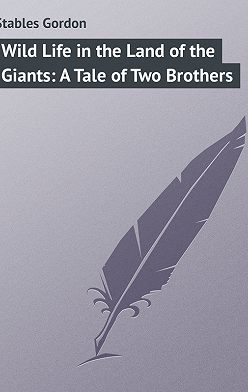 Gordon Stables - Wild Life in the Land of the Giants: A Tale of Two Brothers