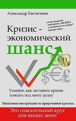 Александр Евстегнеев - Кризис: экономический шанс