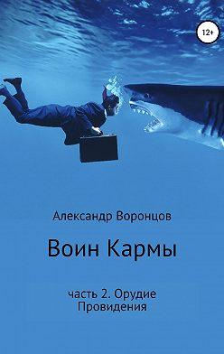 Александр Воронцов - Воин Кармы. Часть 2. Орудие Провидения
