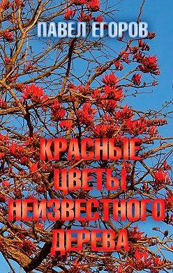 Павел Егоров - Красные цветы неизвестного дерева