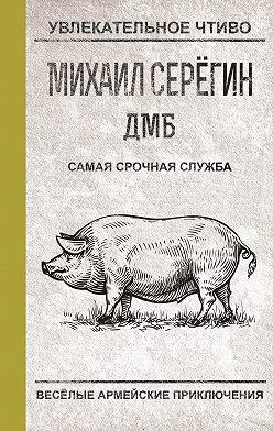 Михаил Серегин - Самая срочная служба