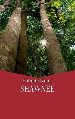 Bahram Zaimi - Shawnee