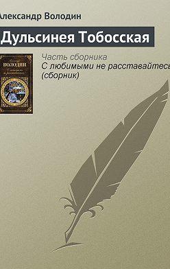 Александр Володин - Дульсинея Тобосская
