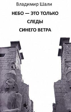 Владимир Шали - Небо – это только следы синего ветра