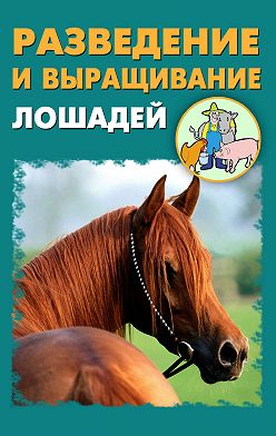 Илья Мельников - Разведение и выращивание лошадей